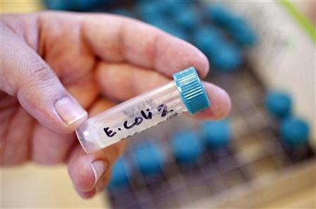 Skażenie wody bakterią coli