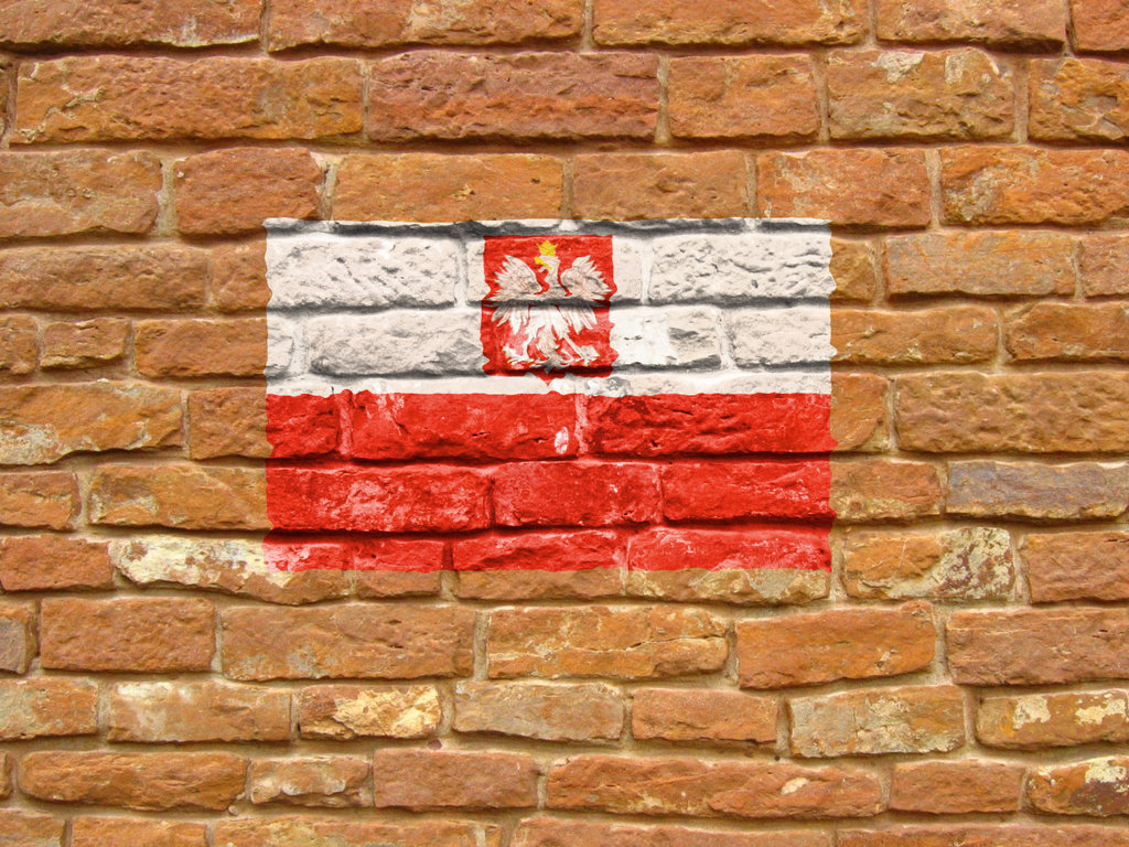 Polscy producenci chemii budowlanej